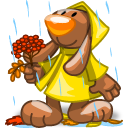 Rain Emoticon