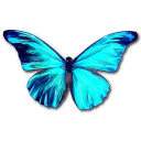 Rhetenor Morpho Emoticon