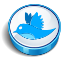 Twitter Bird Sign Emoticon