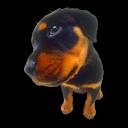 Puppy 9 Emoticon