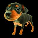 Puppy 7 Emoticon