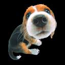 Puppy 1 Emoticon