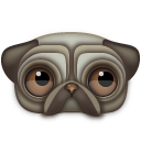Pug Emoticon