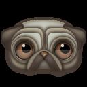 Pug Emoticon