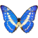 Morpho Cypres Emoticon
