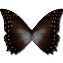 Morpho Amphitrion Emoticon