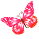 Butterfly Pink Emoticon