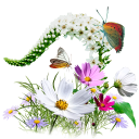 Flowers Wildflowers Emoticon