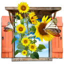 Flowers Sunflowers Window Emoticon
