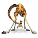 Madagascar Melman Emoticon