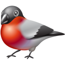 Bullfinch Emoticon