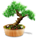 Bonsai Emoticon