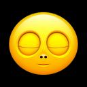 Smiley Sleep Emoticon