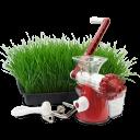 Hand Wheatgrass Juicer Emoticon