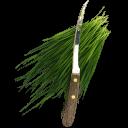 Fresh Cut Wheatgrass Emoticon