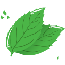 Mint Leaf Emoticon