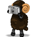 Photographer Emoticon