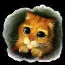 Puss 3 Emoticon