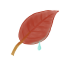 Leaf Emoticon