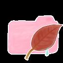 Folder Candy Leaf Emoticon