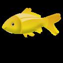 Fish Emoticon