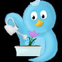 Spring Flower Emoticon