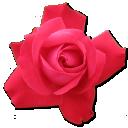 Rose Cerise Emoticon