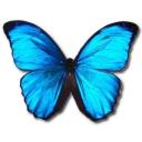 Morpho Menelaus Emoticon