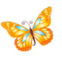 Butterfly Orange Emoticon