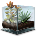 Succulent Terrarium Emoticon