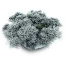 Snowy Stone Emoticon