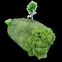 Island Stone Emoticon