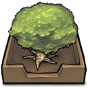 Tree In An Inbox Emoticon