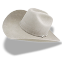 Hat Cowboy White Emoticon