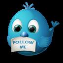 Twitter Follow Me Emoticon