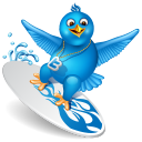 Twitter Surf Emoticon