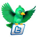 Twitter Flying Green Emoticon