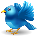 Twitter Bird Landing Emoticon