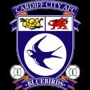 Cardiff City Emoticon