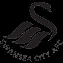 Swansea City Emoticon